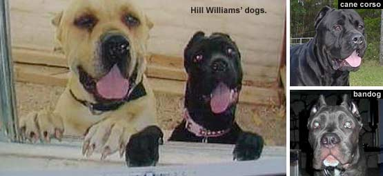 2009 Dog Bite Fatality: Rancho Mirage Man Killed by Two ...