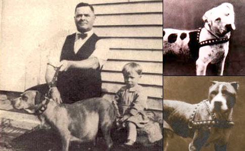 John P. Colby, Louis B. Colby, Colby's Pincher and Colby's Twister