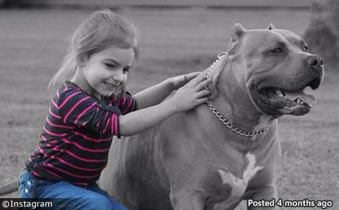 Houma girl killed by family pit bull