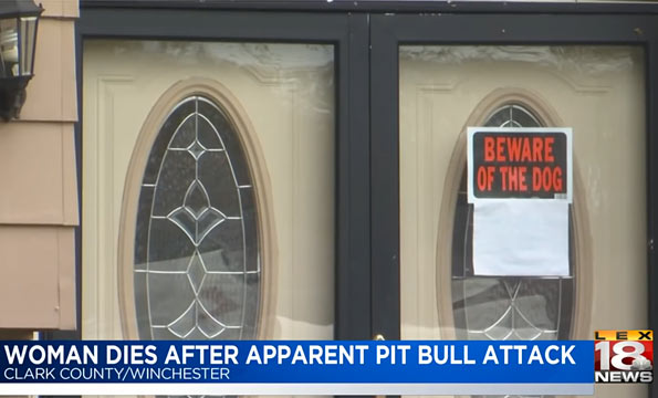 pit bull kills owner in Winchester