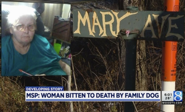 wheelchair bound woman killed by family pit bull