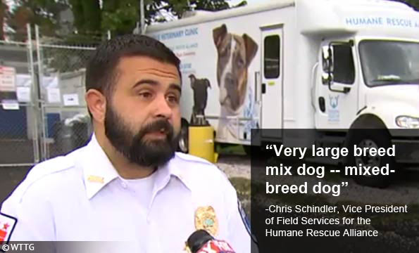 breed identification Human Rescue Alliance