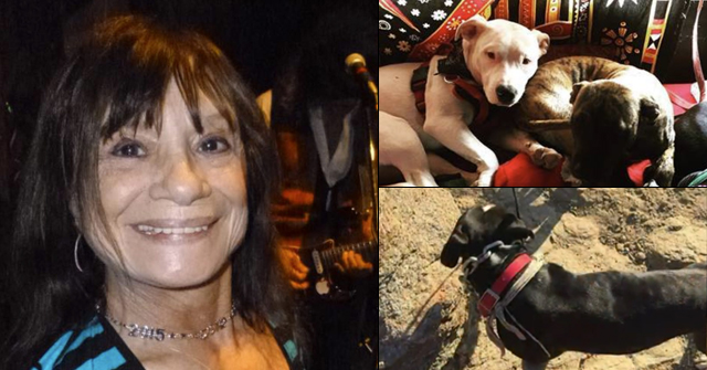 pit bull kill joshua tree woman