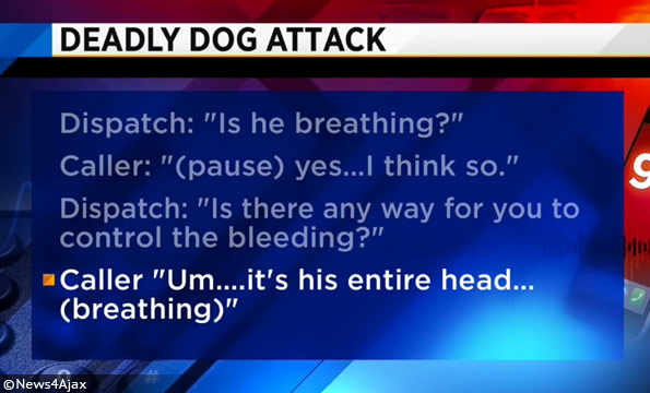 Alachua county dog attack 911