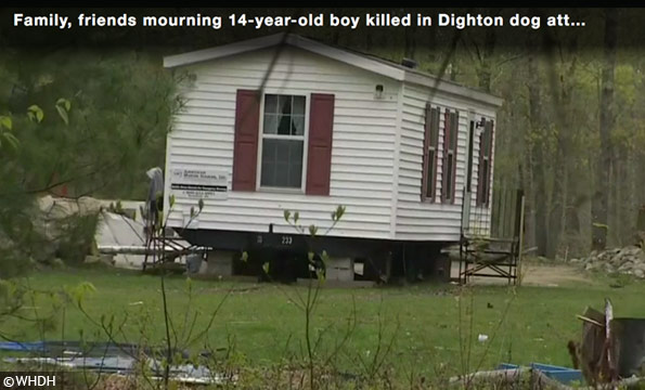 Dighton dog attack kills teenager