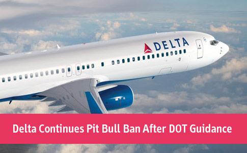 Delta continues pit bull ban