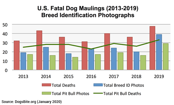 breed identification photograph 2013-2019