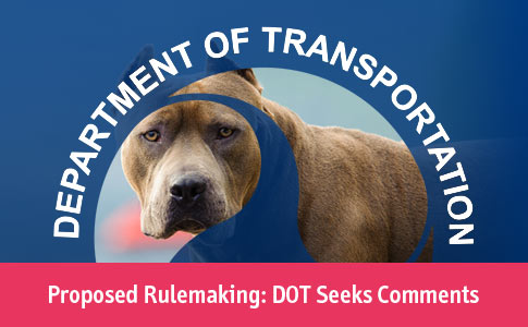 DOT seeks comments pit bulls breed restrictions