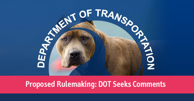 dot seeks comments pit bulls