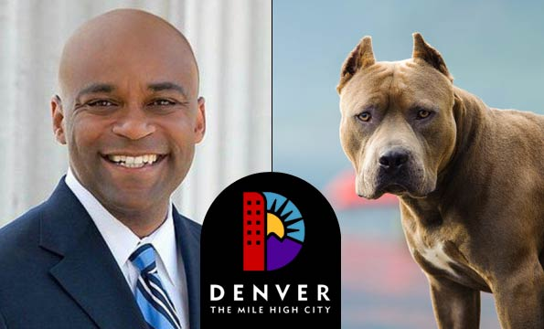 keep people safe denver pit bull ban