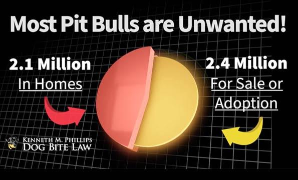 stop breeding pit bulls