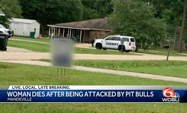 Pit bulls kill woman in mandeville