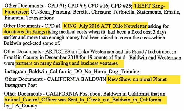 Various court filings steffen baldwin