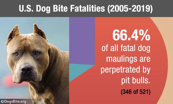 15 years of U.S. fatal dog maulings