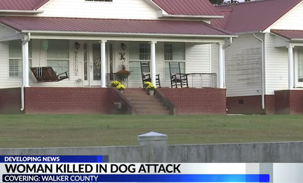 Walker county fatal dog attack