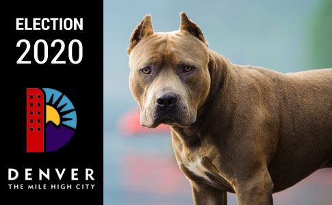 Denver Provisional Breed-Restricted License