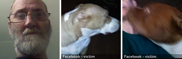 Donald Ryan fatal pit bull attack, 2020 breed identification photograph