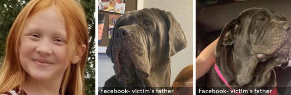 Skylar Headrick fatal mastiff attack, 2020 breed identification photograph