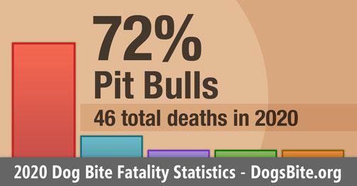 Chart - 2020 dog bite fatality statistics
