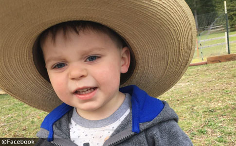 Elliott Sherwin - killed by grandparents rottweilers