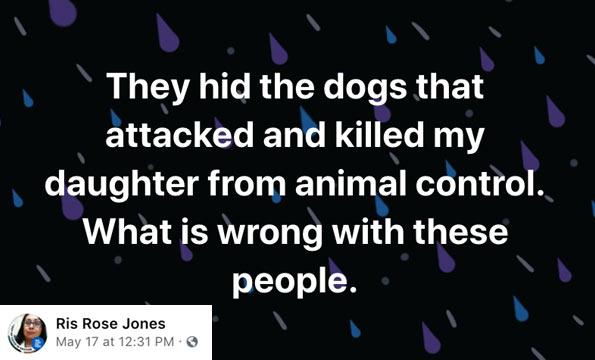 Fort Defiance fatal dog attack
