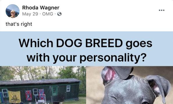 Rhoda Wagner, dog sitting pit bulls